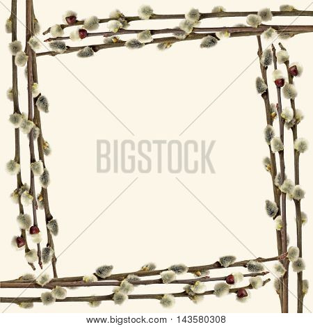The frame of willow branches. Isolated on white background.