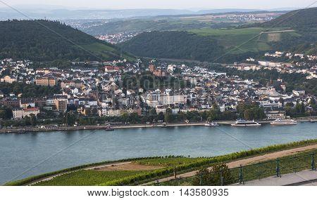 Vineyards River Rhine Bingen At Dawn