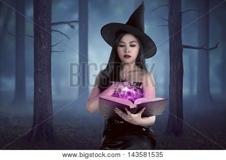 Young Asian Wizard Woman Holding Spell Book In The Forest With Fog Backround