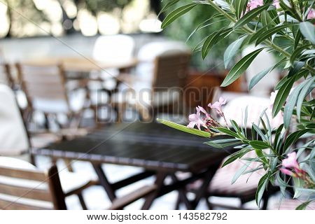 Wood table, chaires  and flowers at the restaurant cafe bistro terrace