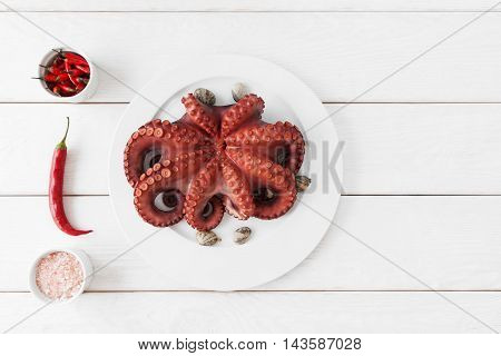 Whole fresh raw octopus on white plate with tentacles copy space. Seafood delicatessen ready for cooking with chili and pink salt on white background. Mediterranean meal, luxury food concept