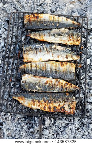 Mackerel on the Barbecue open fire. Healthy food.