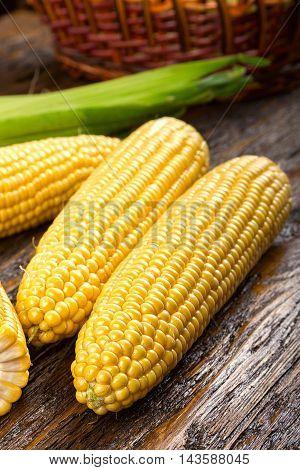 raw corncobs on a dark wooden background. the background is basket