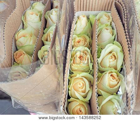 Roses wrapped with paper sold in the wholesale market, Selective focus