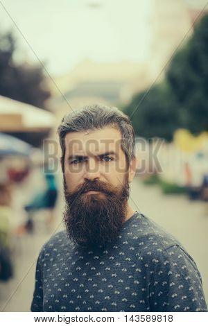 Handsome Bearded Man Outdoor