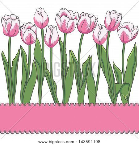 Vector card with tulips and place for an inscription. Isolated objects.