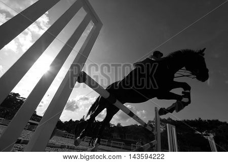 horse jumping a fence in the arena
