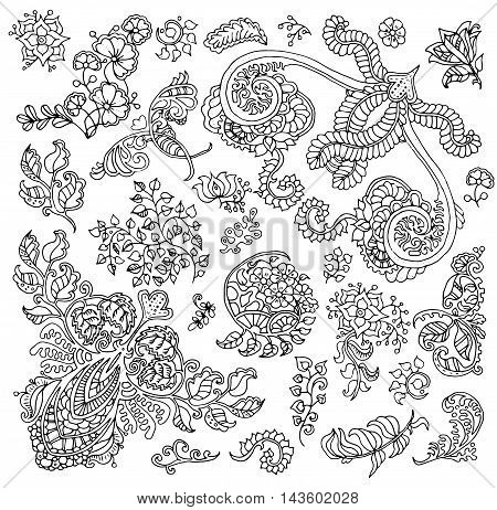 Design set with isolated black and white floral patterns for adult coloring book. Vector vintage ornament elements. Abstract hand drawn doodle illustration