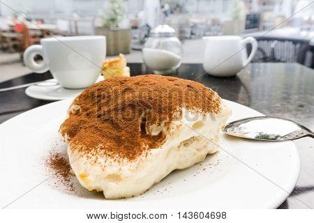 Classical Dessert homemade Tiramisu Cake