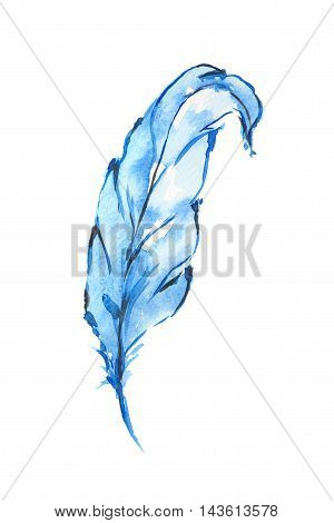 Isolated watercolor blue feather. Birds feathers for boho style and decoration.