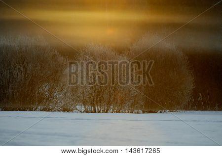 Color fog at dawn in Plesheevo National park. Yaroslavl region Russia