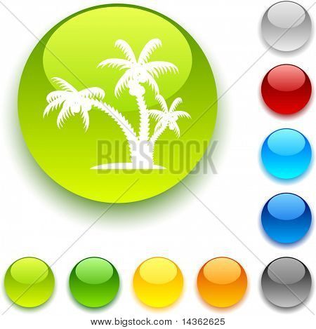 tropical shiny button. Vector illustration