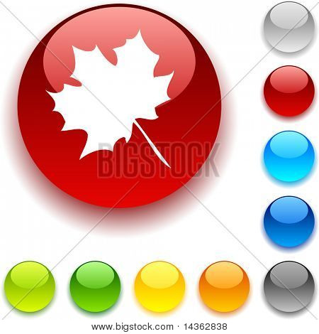 Autumn shiny button. Vector illustration.