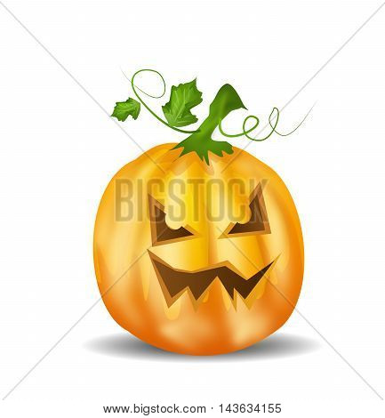 Realistic illustration of halloween pumpkin on white background