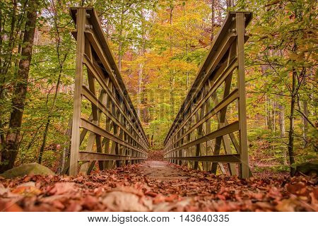 Beautiful scene of a hiking trail in autumn forest