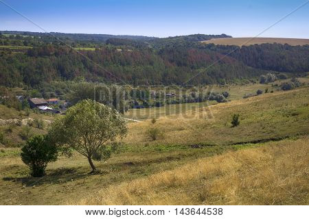 Hilly landscape with a tree on a dry hill and a village with forest on background