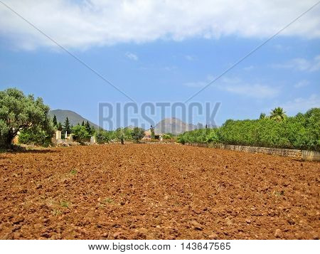 brown farmland rural landscape in the hinterlands of Majorca Spain - tramuntana mountains in background