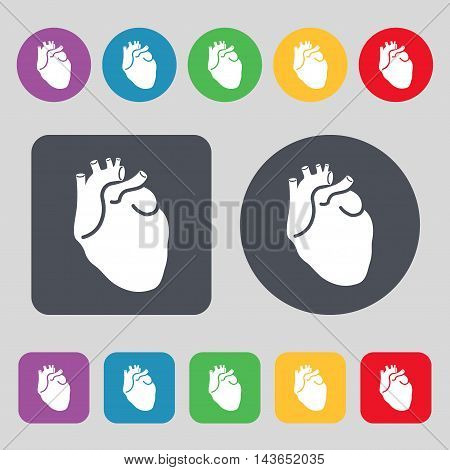 Human Heart Icon Sign. A Set Of 12 Colored Buttons. Flat Design. Vector