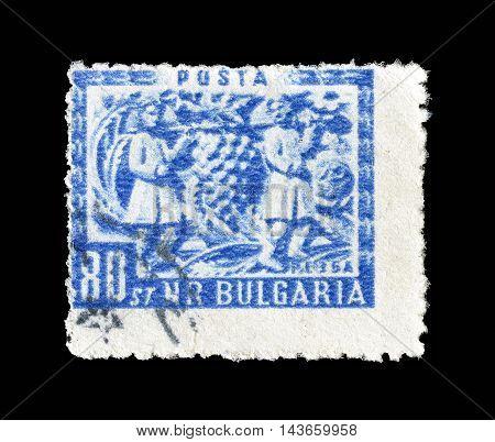 BULGARIA - CIRCA 1953 : Cancelled postage stamp printed by Bulgaria, that shows folk art.