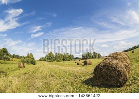 Haystack rolls on the field with green grass and cloudy blue sky. Fish-eye lens.