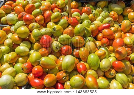 Egg-shaped tomatoes at a market in Palermo, Sicily