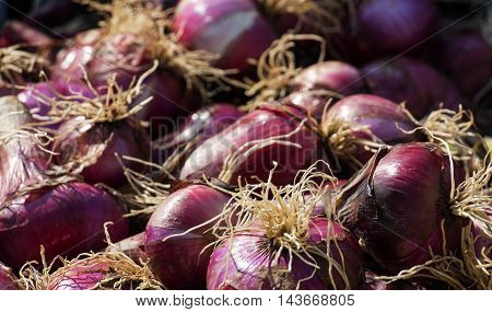 picture of a Organic Red onions in plenty at a market