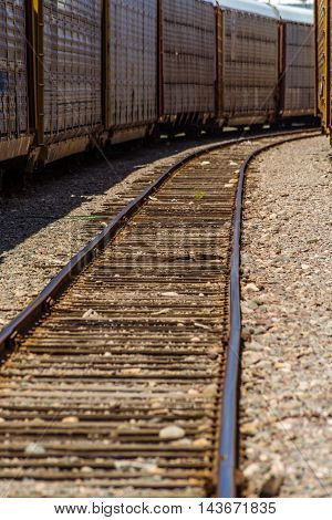 Train And Parallel Rails Perspective View Vertical
