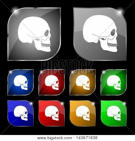 Skull Icon Sign. Set Of Ten Colorful Buttons With Glare. Vector