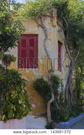 green branches of shrubs encircle a beautiful old house with red shutters