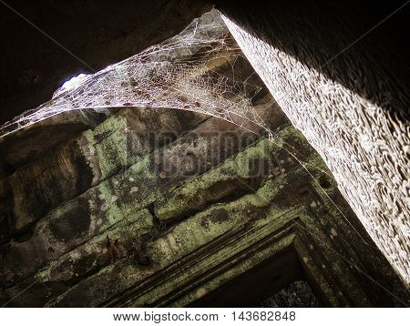 Spider web in Angkor Wat temple complex in Siam Reap, Cambodia.