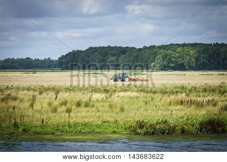 Turning dry grass in the biesbosch national park in the biesbosch national park