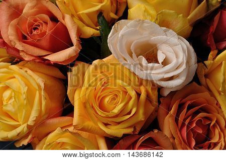 A bouquet of colorful  yellow and ornage roses
