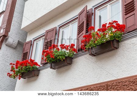 Wall of old house with potted geranium on windows, historic old German town Calw, autumn city landscape with flowers