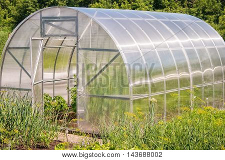 plastic greenhouse for growing vegetables on summer day