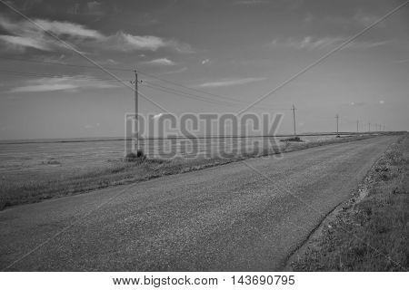 Summer landscape with empty road. Biker consept