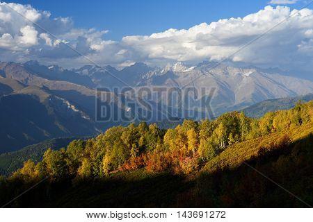 Autumn landscape. Top Ushba in clouds. Birch forest on the hillside. View from Mount Mkheer. Main Caucasian ridge. Zemo Svaneti, Georgia
