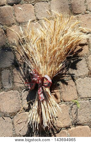 Sheaf of wheat aka Bundle tied up with a nice ribbon
