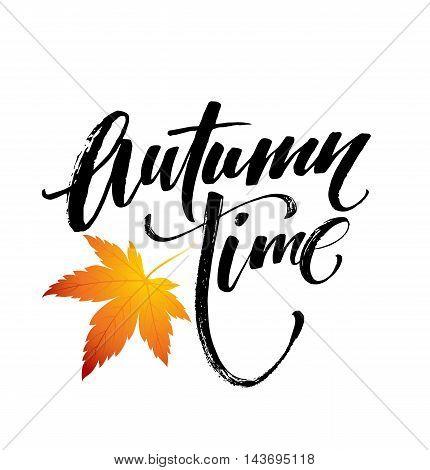 Autumn time seasonal banner design. Fal leaf. Vector illustration EPS10