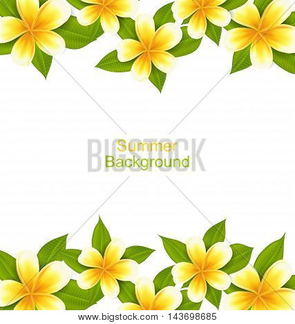 Illustration Beautiful Frame Made in Frangipani, oOrnament with Exotic Flowers - Vector