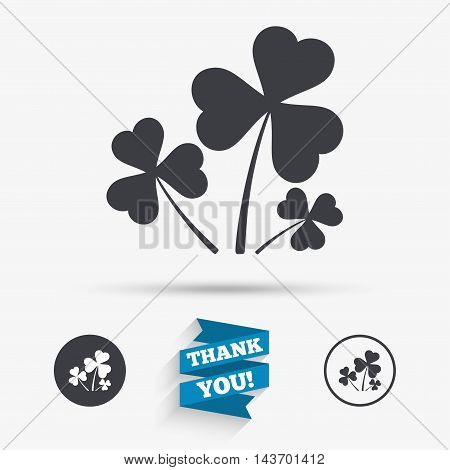 Clovers with three leaves sign icon. Saint Patrick trefoil shamrock symbol. Flat icons. Buttons with icons. Thank you ribbon. Vector