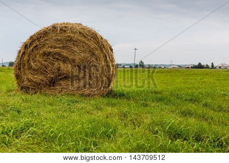 Round hay bale on green grass field background