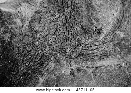 abstract of old rubber texture for background used
