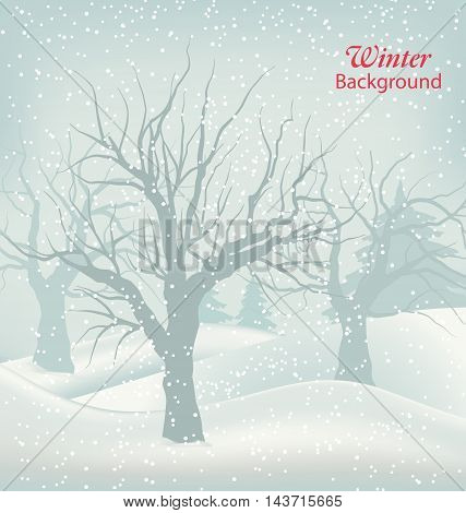Illustration Winter Outdoor Background, Snowfall and Trees. Natural Landscape - Vector
