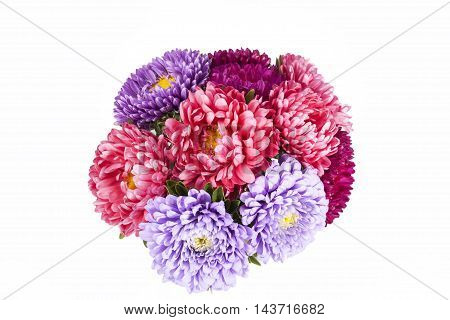 Bouquet of aster flowers isolated on white background .