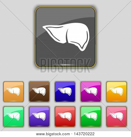 Liver Icon Sign. Set With Eleven Colored Buttons For Your Site. Vector
