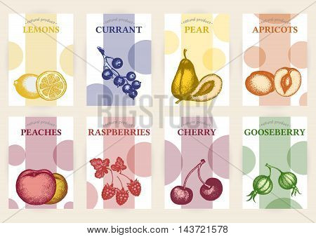 Vector hand drawn sketch fruits banners set. Eco foods template illustration. Lemons pears black currants peaches apricots cherries gooseberries.