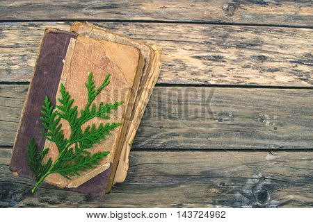 Old and tattered book on wood background