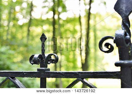 Wrought iron fence. decortaive fence, ornate boundary background.