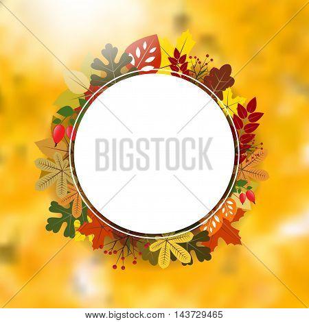 Blank Circle Frame On Autumnal Background