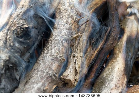 Ignite A Fire Of Twigs
